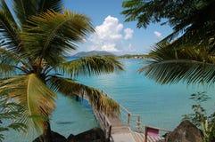 Tortola 2 Arkivbilder