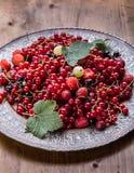 tortowa porzeczkowa czerwona gąbka Talerz z Asortowanymi lato jagodami, malinki, truskawki, wiśnie, rodzynki, agresty Zdjęcie Royalty Free