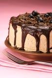 tortowy czekoladowy domowej roboty Zdjęcia Royalty Free