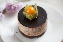 tortowy czekoladowy mousse Fotografia Stock