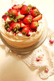 Tortowy Pavlova z świeżymi truskawkami Fotografia Stock