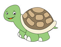 tortue illustration stock