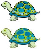 tortue de 2 dessins animés Images libres de droits