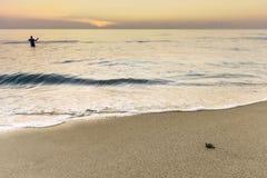 Tortue de mer de lever de soleil Image libre de droits
