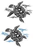 Tortue en eau de mer Photos libres de droits