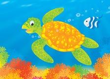 Tortue et poissons au-dessus d'un récif coralien Photos libres de droits