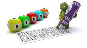 Tortue jouant le bingo-test Photo stock