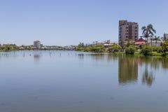 Tortues au lac Violao en Torres Photo libre de droits