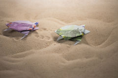 Tortues d'origami des billets de banque Photos stock