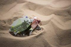 Tortues d'origami des billets de banque Photos libres de droits