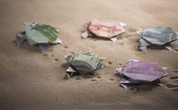 Tortues d'origami des billets de banque Photographie stock libre de droits