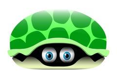 Tortuga Stock de ilustración