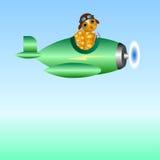 Tortuga acuática - piloto en el avión Imágenes de archivo libres de regalías