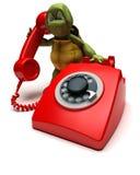 Tortuga con un teléfono Imagenes de archivo