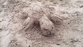 Tortuga de la arena Fotos de archivo