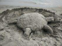 Tortuga de la arena por la playa Imágenes de archivo libres de regalías