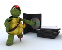 Tortuga del pirata con CD y software de DVD Foto de archivo libre de regalías