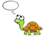 Tortuga divertida Imagen de archivo