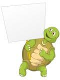 Tortuga divertida Imagenes de archivo