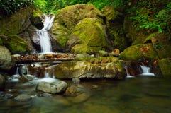 Tortuga Falls Stock Photo