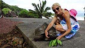 Tortuga gigante de Digue del La almacen de metraje de vídeo