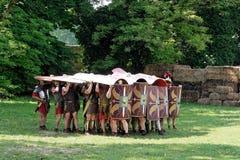 Tortuga romana Foto de archivo libre de regalías