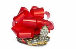 Tortuga - un regalo Imagen de archivo libre de regalías