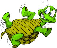 Tortuga upside-down Imagenes de archivo