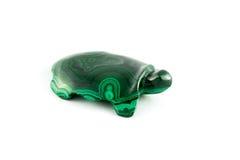 Tortuga verde Imágenes de archivo libres de regalías