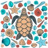 Tortuga y cáscaras de mar en la línea estilo del arte Ilustración drenada mano del vector fotografía de archivo libre de regalías
