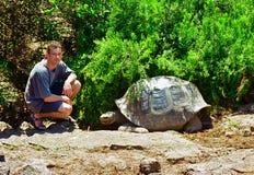 Tortuga y turista de las Islas Gal3apagos Imágenes de archivo libres de regalías