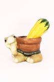 Tortuga y una calabaza Fotografía de archivo