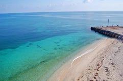 tortugas пляжа сухие Стоковые Изображения