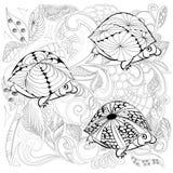 tortugas de la fantasía Fotografía de archivo