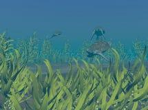 Tortugas de mar verde Fotografía de archivo libre de regalías