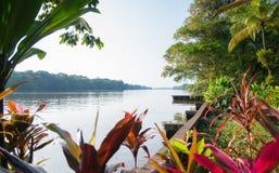 Tortuguero运河 库存图片