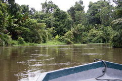 Tortuguero. Canals and jungle, Costa Rica stock images