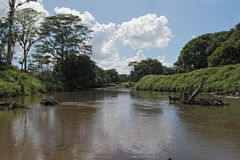 The Tortuguero River in the north east of Costa Rica.  Royalty Free Stock Photo