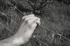 Tortured hand grasping barbed wire. Tortured and dirty hand grasping desperately barbed wire Royalty Free Stock Photography