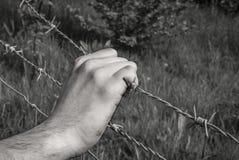 Torturująca ręka chwyci drut kolczastego Fotografia Royalty Free