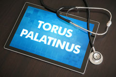 Torus palatinus (cutaneous disease) diagnosis medical concept on. Tablet screen with stethoscope Stock Photos