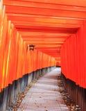 Torusportarna på Fushimi Inari förvarar i Kyoto Royaltyfri Bild