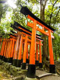 Torustore an Schrein Fushimi Inari Stockbild
