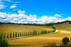 Toscânia, vinhedo, árvores de cipreste e estrada, paisagem rural, Ital Foto de Stock