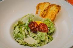 Tosca Caesar Salad Imagem de Stock