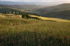 Toscaans gebied Royalty-vrije Stock Foto's