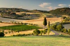 Toscaans land dichtbij Pienza, Italië Stock Foto