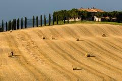 Toscaans Landbouwbedrijf Stock Afbeelding