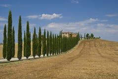 Toscaans landschap Stock Afbeelding