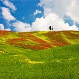Toscaans Landschap Stock Foto's